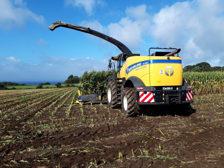 Ensilage - Travaux agricoles