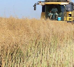 Les entreprises de travaux agricoles doivent recruter plus dapprentis - Travaux agricoles