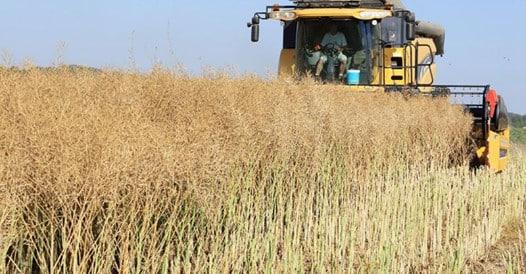 Les entreprises de travaux agricoles doivent recruter plus dapprentis - Les entreprises de travaux agricoles doivent recruter plus d'apprentis
